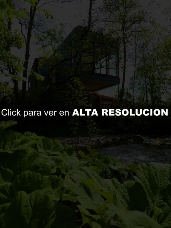 Casa Moderna Rodeada de Vegetación